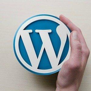 Wordpress Seite erstellen lassen