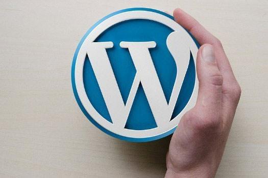 homepage-professionell-erstellen-mit-wordpress-1